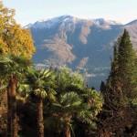 אסקונה 2013 הנוף מהמלון