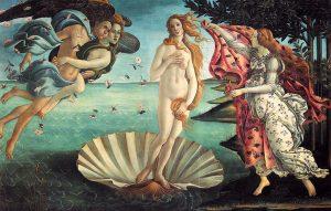 Birth of Venus גלריה אופיצי